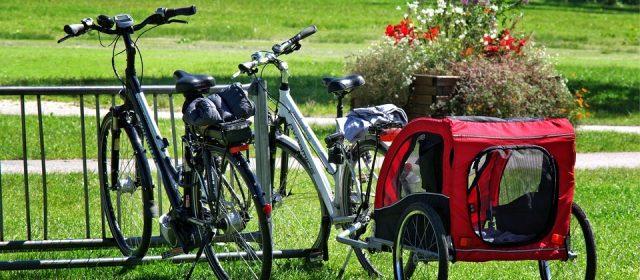 Wybór przyczepki rowerowej  – poradnik
